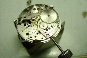 DSC06650-300x200