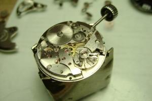 DSC06653-300x200